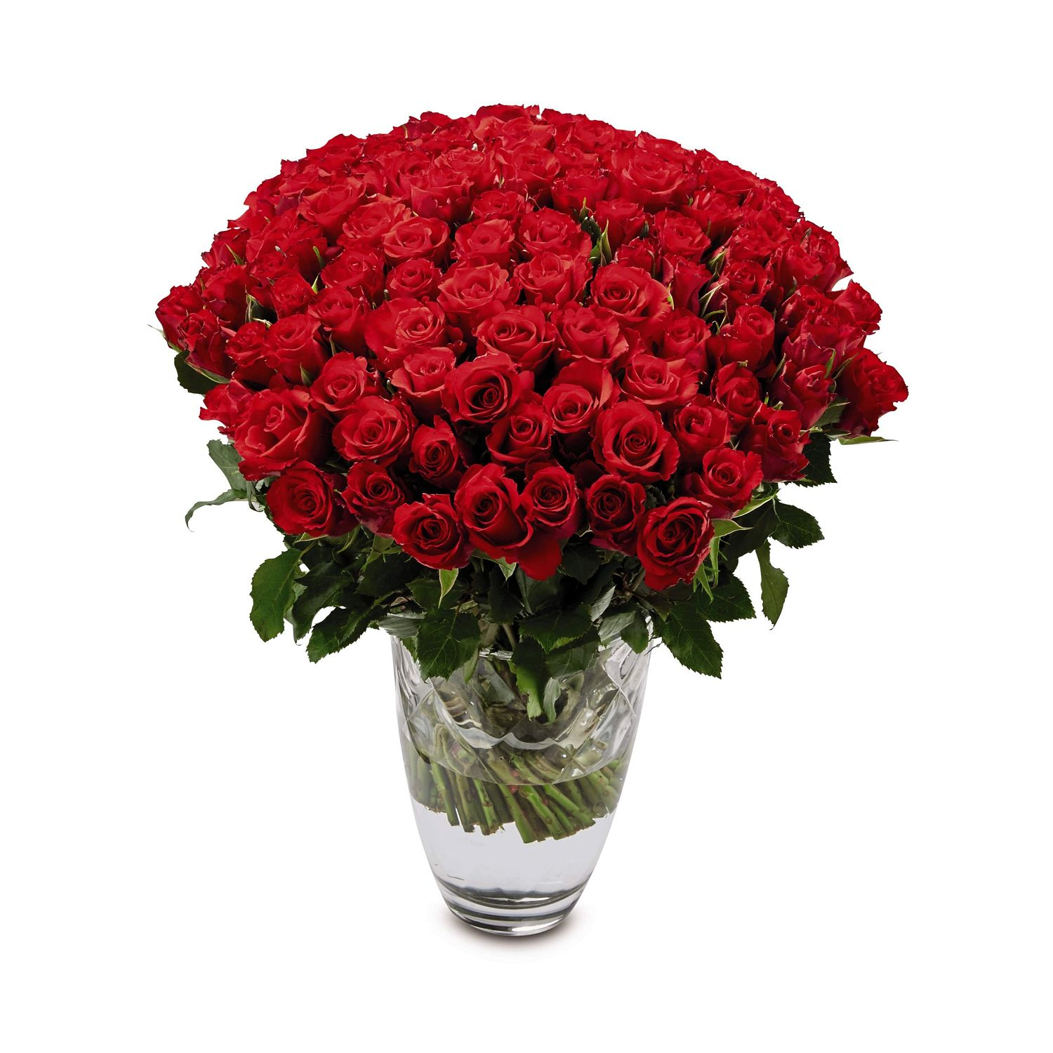 Indias no1 online flowers delivery portal here flower flowers delighted rose bunch izmirmasajfo